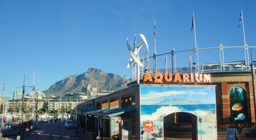 Table Mountain, na Cidade do Cabo.